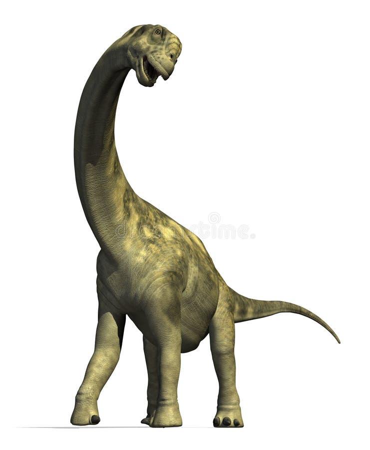 2 camarasaurus恐龙 库存例证