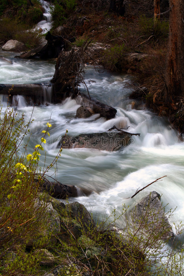 2 creek jarów wiosny fotografia royalty free