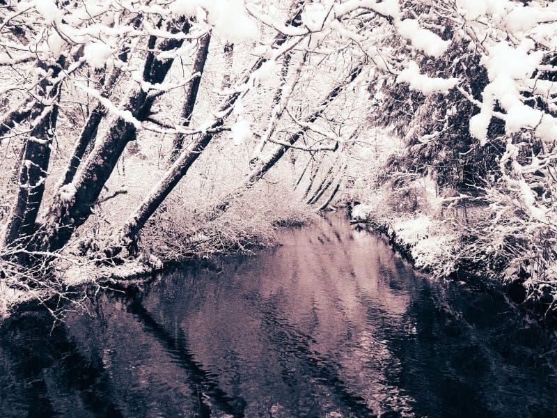 2 creek widok opadów śniegu obrazy royalty free