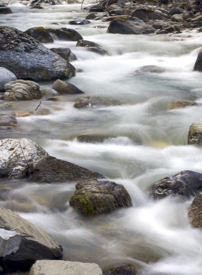 2 creek wiosna zdjęcia royalty free