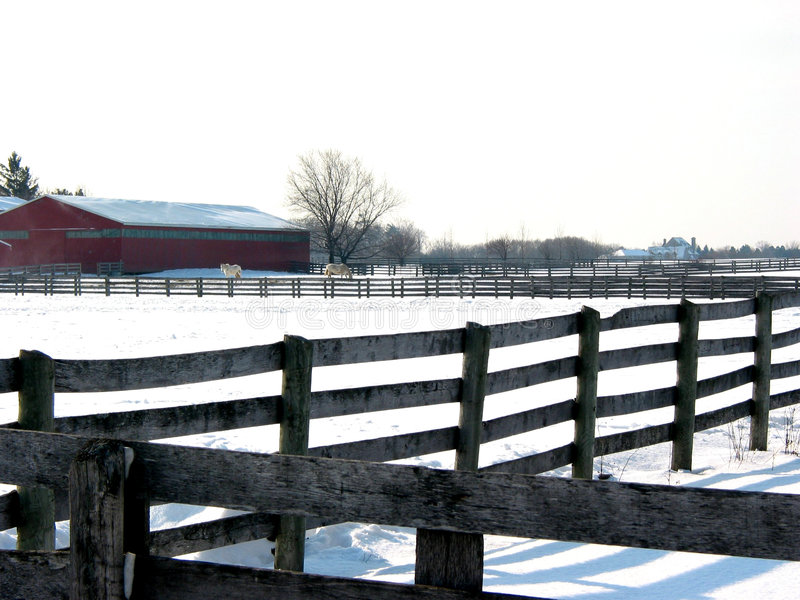 2 farm płot obrazy royalty free
