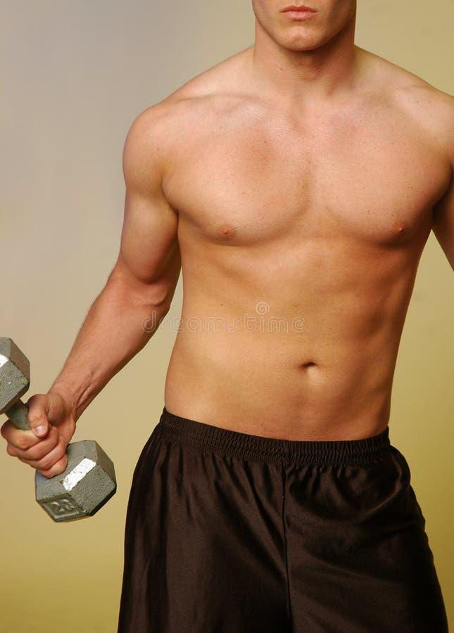 2 fizycznej fitness facet zdjęcia stock