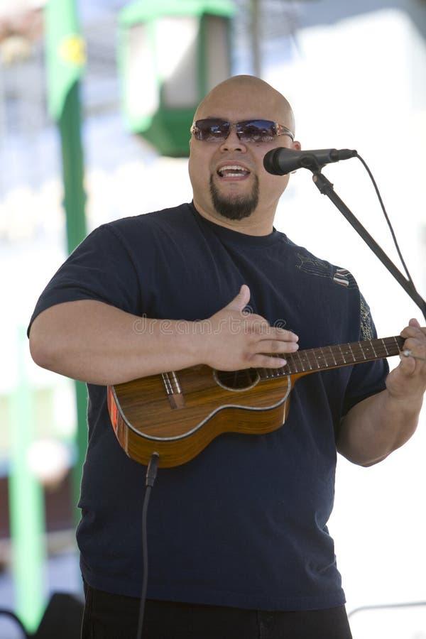 2 gracza festiwali/lów ukulele zdjęcie stock