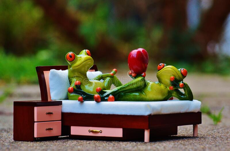 2 Green Frog On Bed Figurine Free Public Domain Cc0 Image