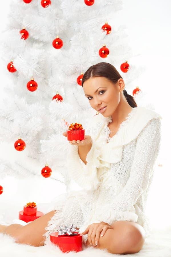 2 härliga jul arkivbild
