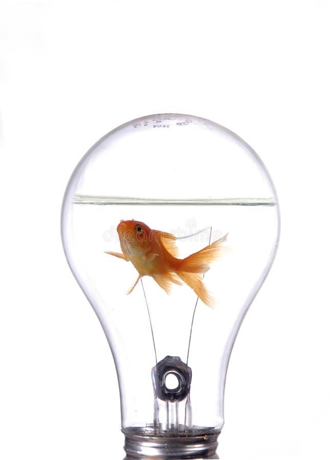 2 innowacji zdjęcia stock