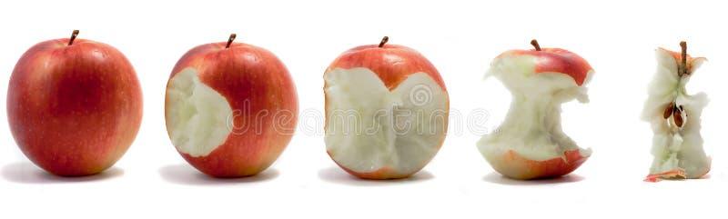 2 jabłczana sekwencja zdjęcie royalty free