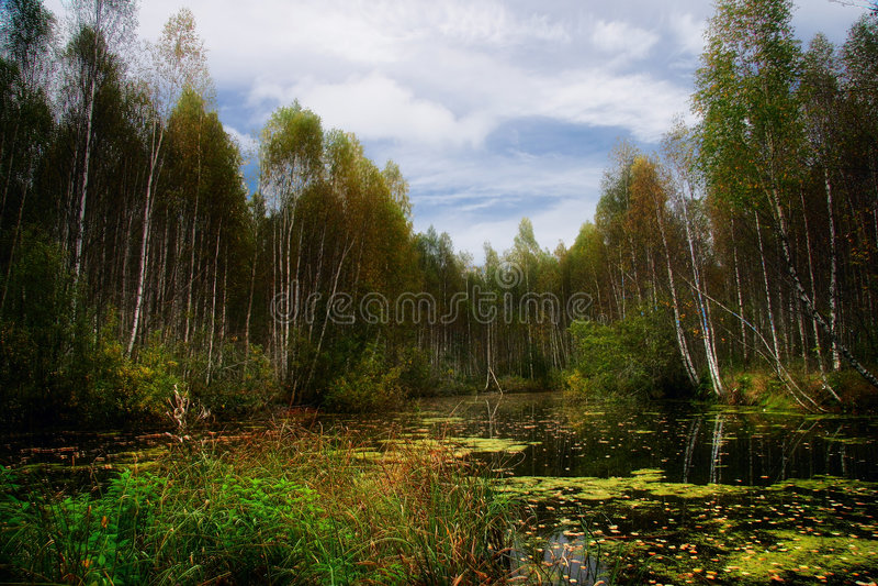2 jesienią jeziora obraz royalty free
