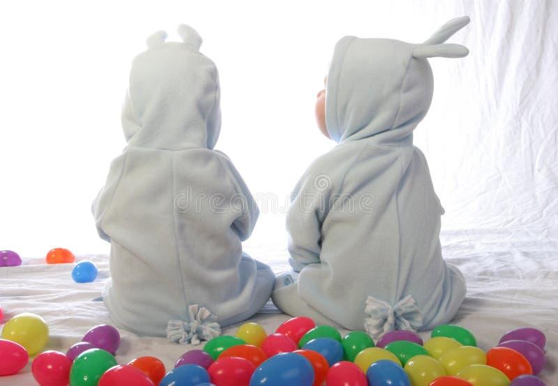 2 kaniner royaltyfri bild