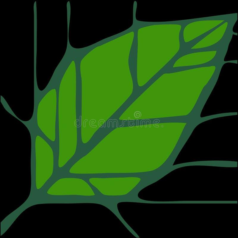 2 liści, ilustracja wektor