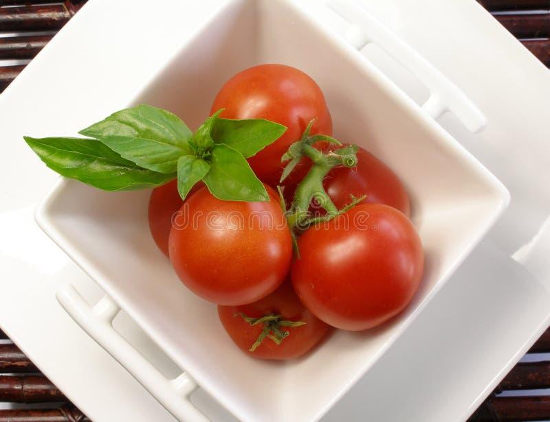 2 małego basila pomidora zdjęcie stock