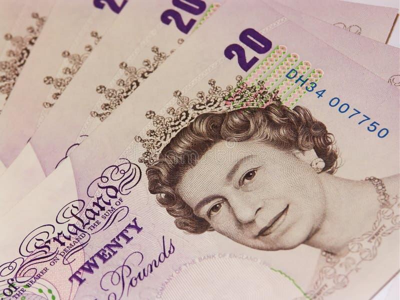 2 pund fullödigt royaltyfri fotografi