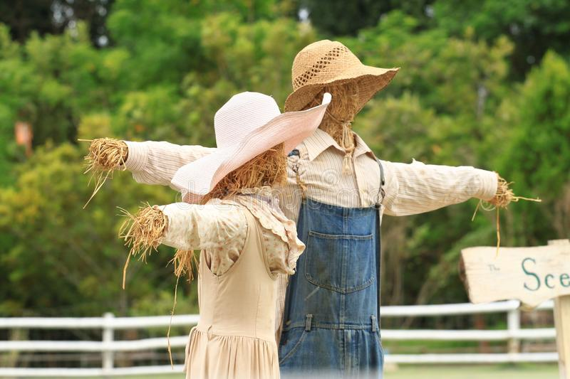 Download 2 scarecrows stock photo. Image of nature, couple, vintage - 25860870