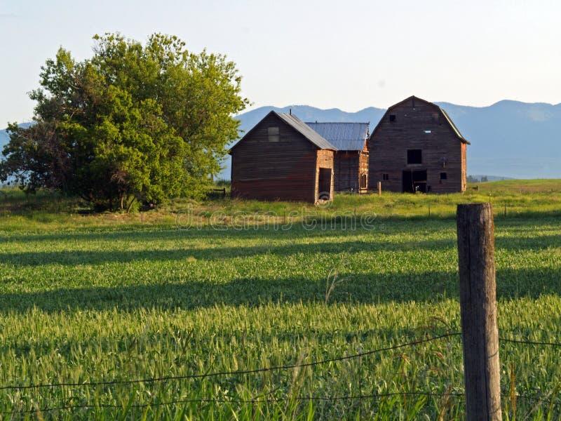 2 stodole oficyny zdjęcie stock