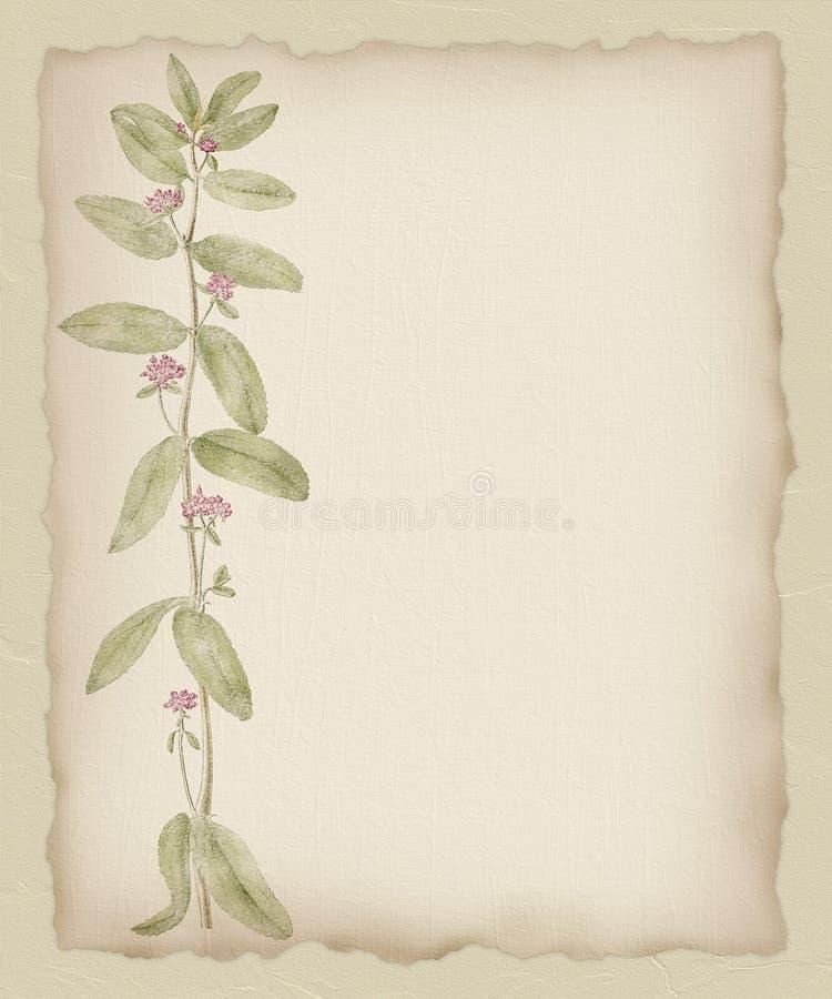 2 tło kwiatu papier drzejący ilustracja wektor