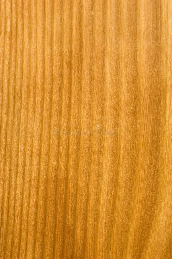 2 tekstur drewna obraz royalty free