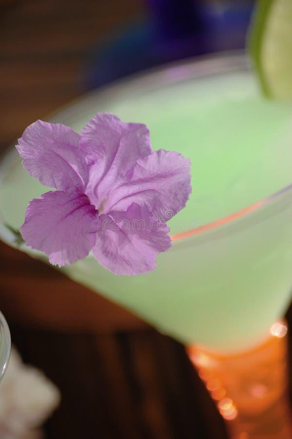 2 tropikalny koktajl zdjęcie stock