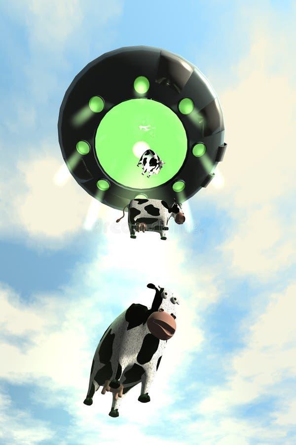 2 uprowadzeń komiczna krowa ilustracji