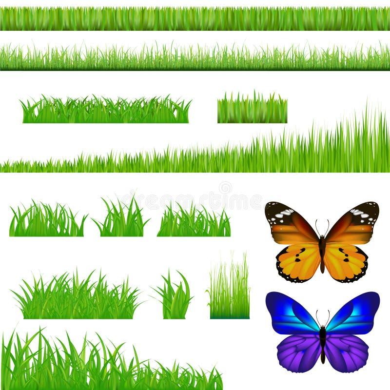 2 vlinders en de Groene Reeks van het Gras. Vector vector illustratie