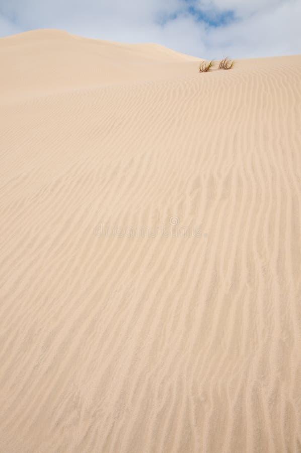 2 wydmowy piasek fotografia stock