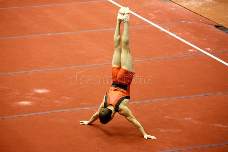 2008 μεγάλο γυμναστικό Μιλάν&omic στοκ εικόνες με δικαίωμα ελεύθερης χρήσης