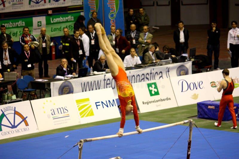 2008 storslagna gymnastiska milan prix royaltyfri foto