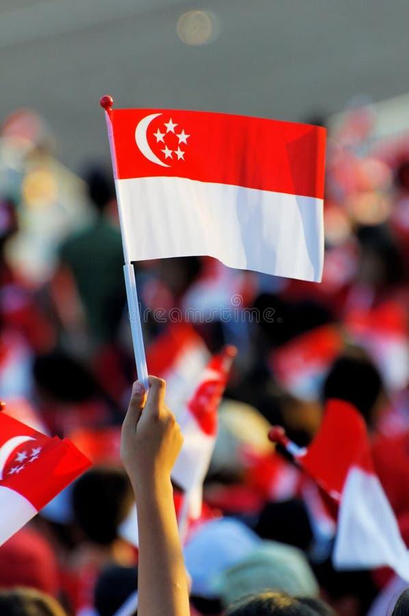 2009 ondulations de Singapour de ndp d'indicateur d'assistance image stock
