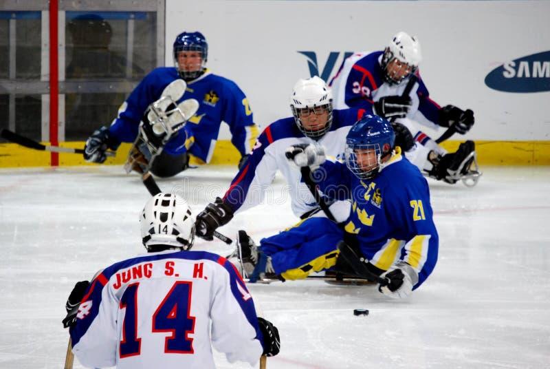 2010场比赛paralympic冬天 免版税库存照片