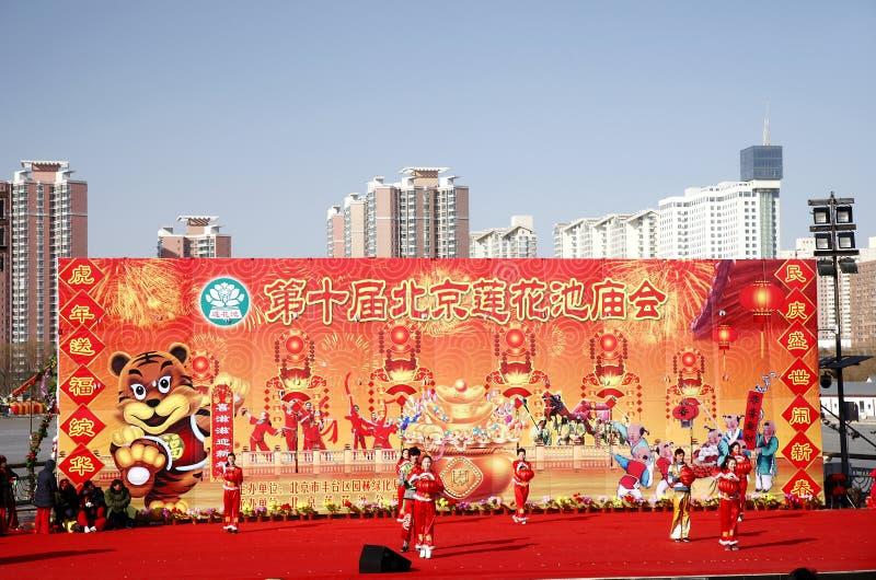 2010年庆祝中国新年度 免版税库存图片