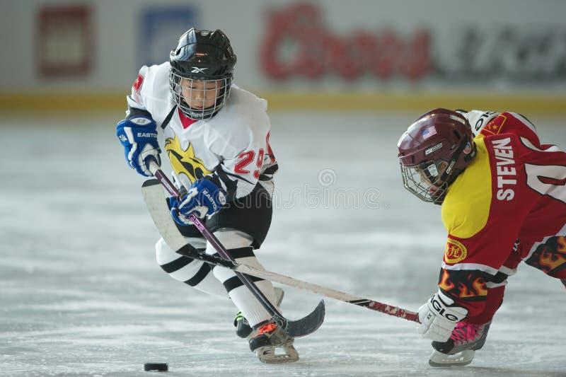 2010 Hockey 5s - 1 stock fotografie