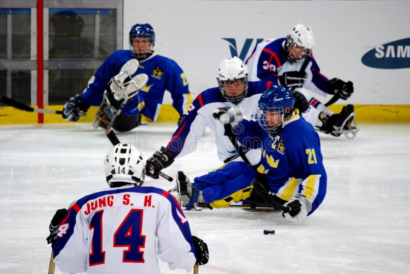 Download 2010 Paralympic Winter Games Editorial Stock Photo - Image of stick, olympic: 13512098