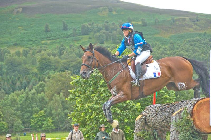 2011 проба всадника французской лошади международная стоковое изображение rf