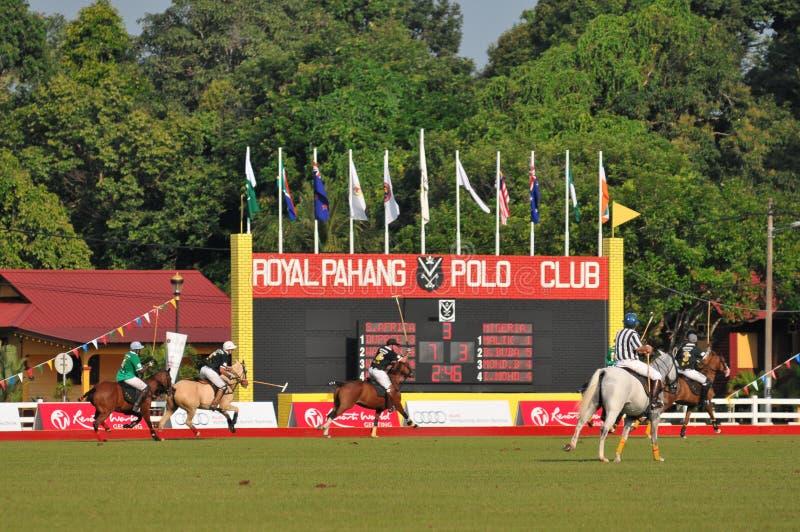 2011 filiżanki fip świat zdjęcia royalty free