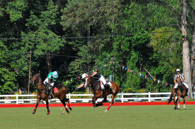 2011 FIP POLO WORLD CUP royalty free stock photography