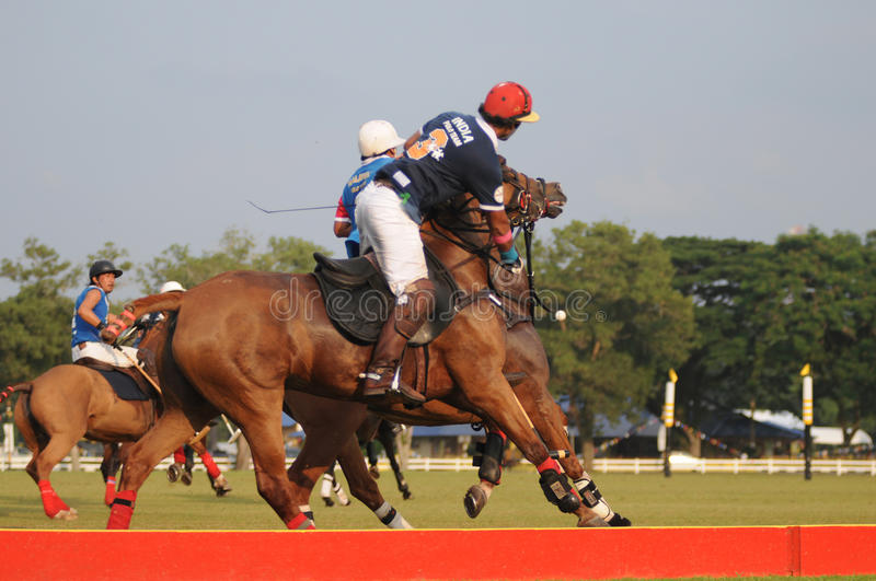 2011 FIP Polo World Cup Zone D Playoffs stock images
