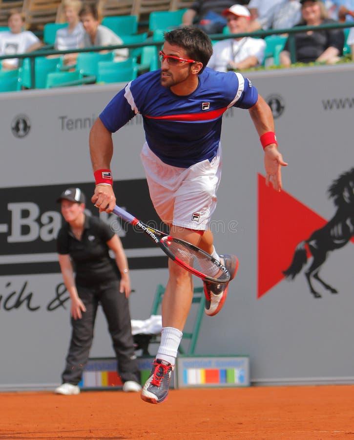 2012年tipsarevic janko的网球 图库摄影