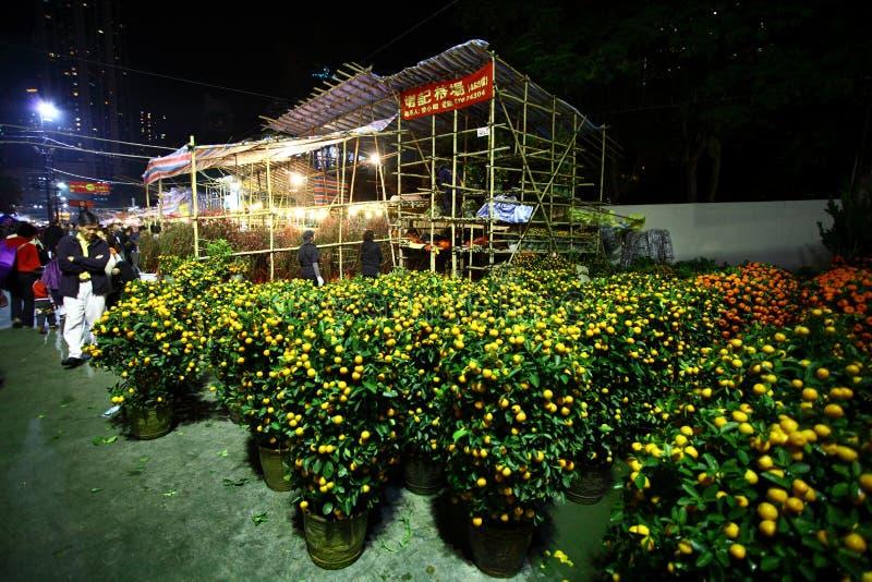 2012 справедливых Новый Год Hong Kong лунных стоковое изображение rf