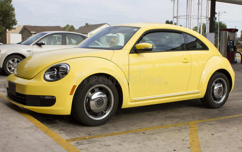 sale for beetle stock volkswagen car tradecarview used