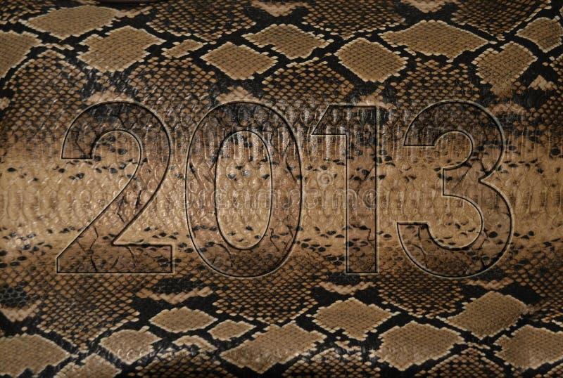 2013蛇皮 免版税库存图片