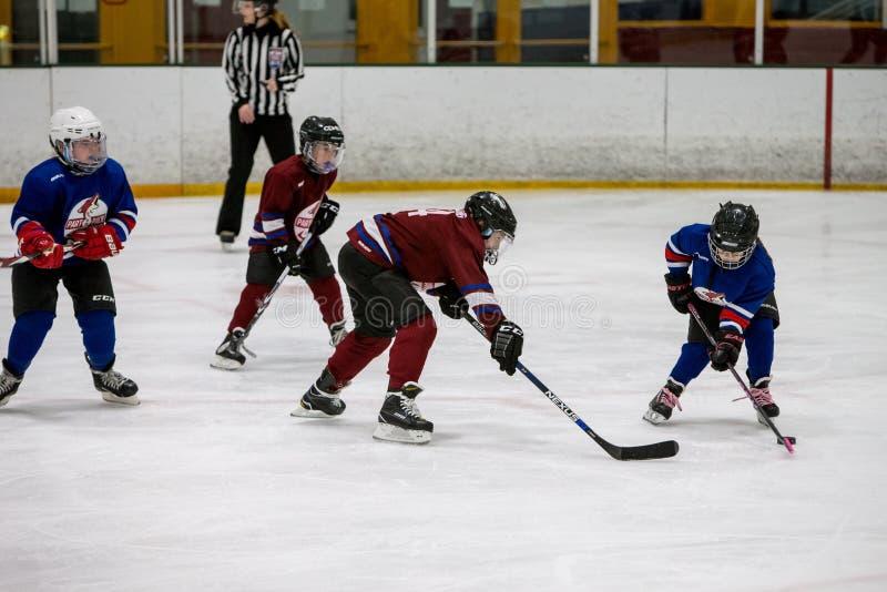 20161204.134715.sean_fall_hockey_game.9124 Free Public Domain Cc0 Image