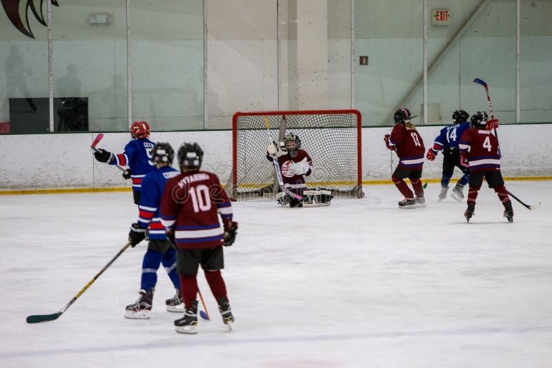 20161204.135008.sean_fall_hockey_game.9140 Free Public Domain Cc0 Image