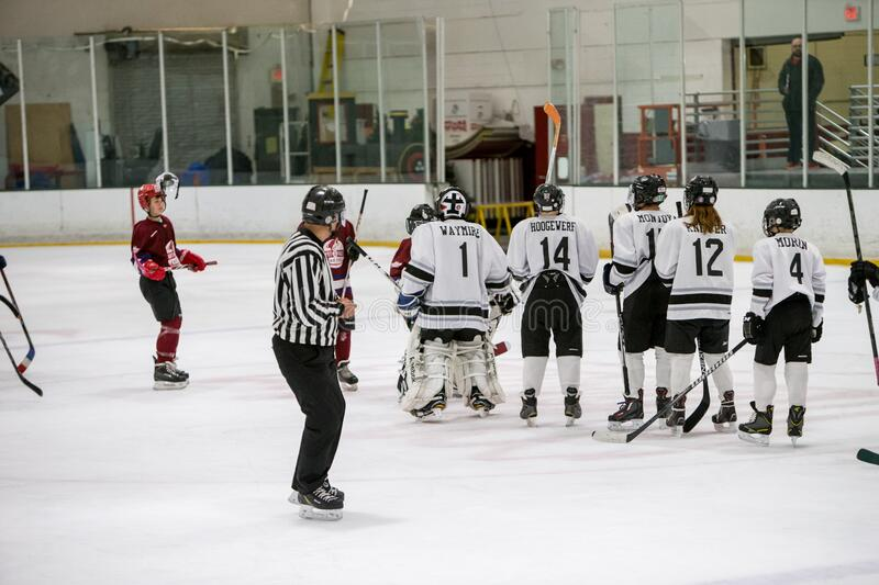 20161218.095153.caitlin_fall_playoff_hockey_game.0229 Free Public Domain Cc0 Image