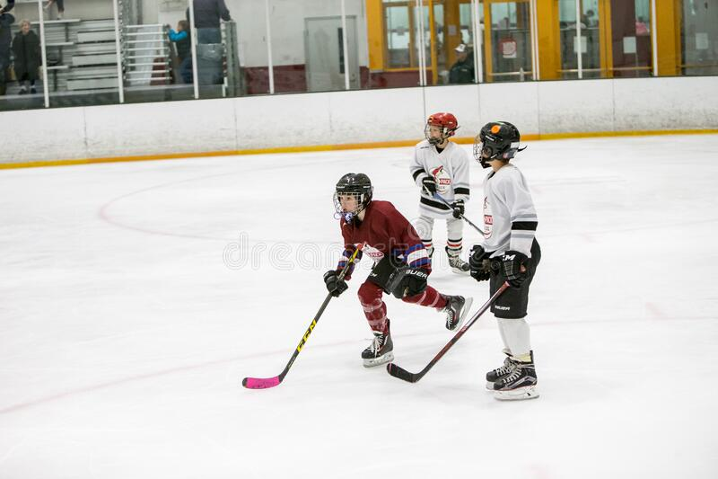 20161218.140052.sean_fall_playoff_hockey_game.0333 Free Public Domain Cc0 Image