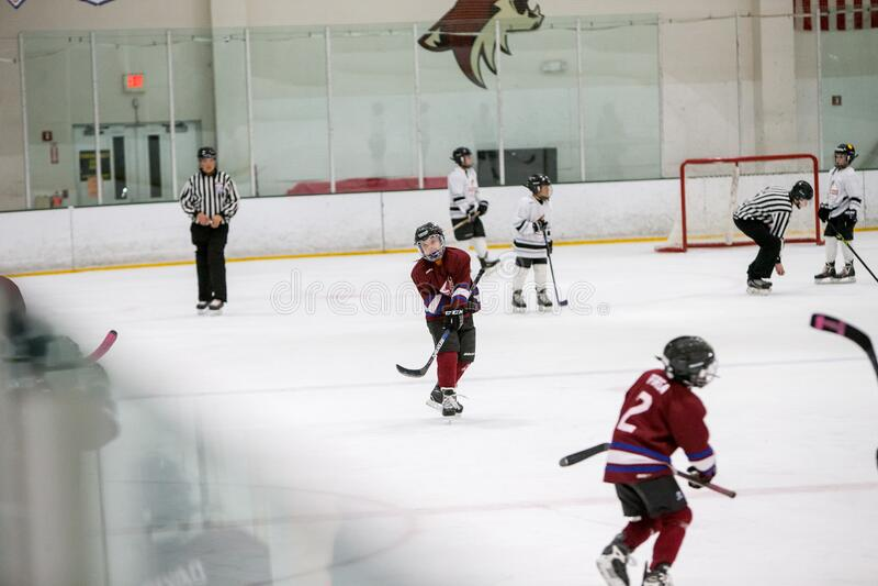 20161218.142757.sean_fall_playoff_hockey_game.0470 Free Public Domain Cc0 Image