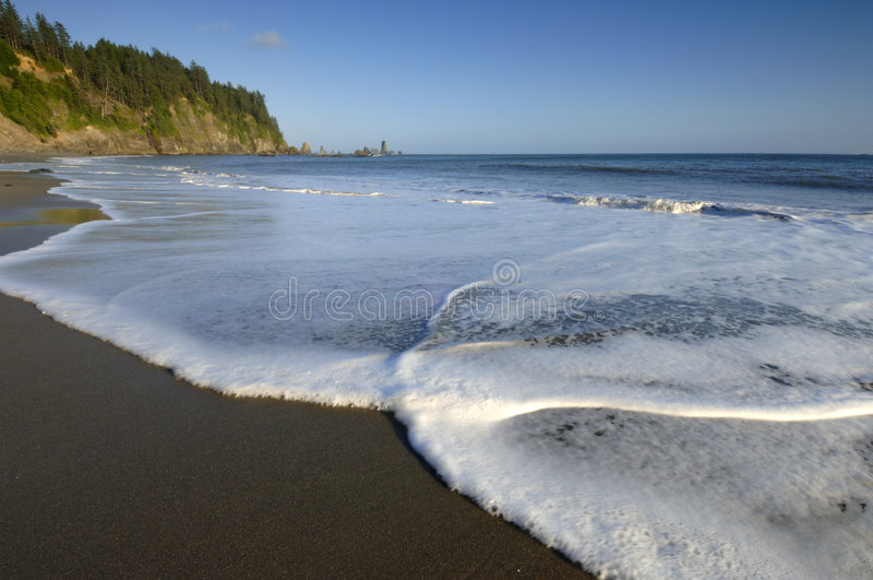 207海岸 免版税库存照片