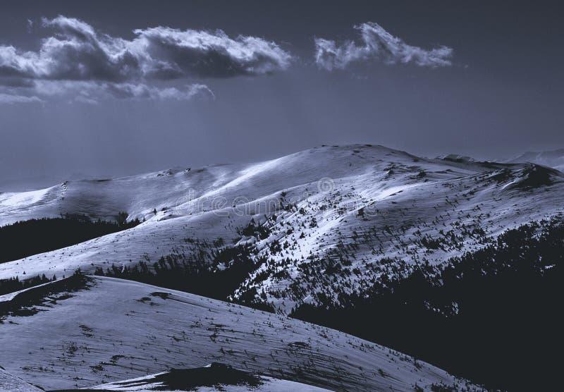 Download 21 berg arkivfoto. Bild av berg, snow, trees, contrast - 238188
