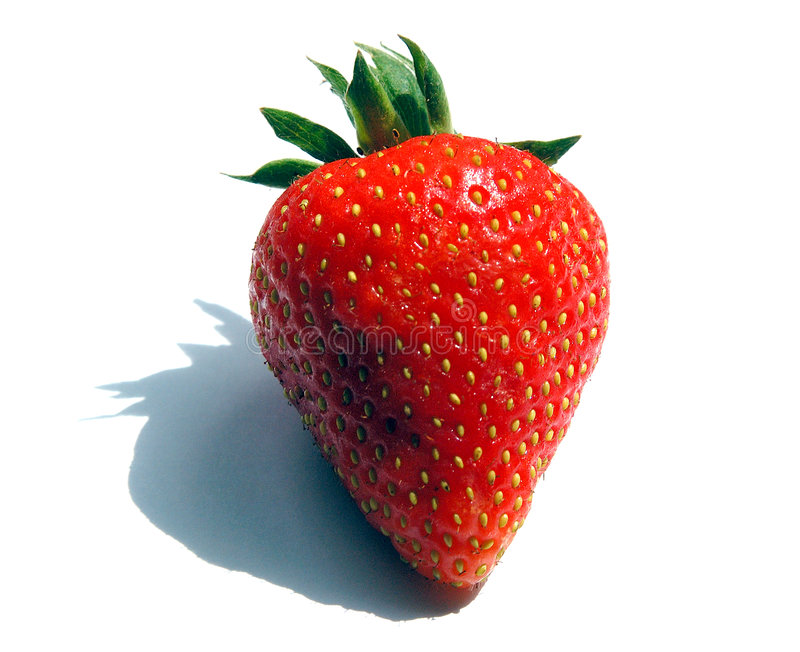 前个草莓 免版税库存照片