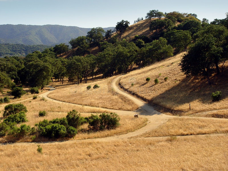 加利福尼亚小山 库存图片