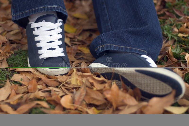 叶子鞋子 免版税库存照片