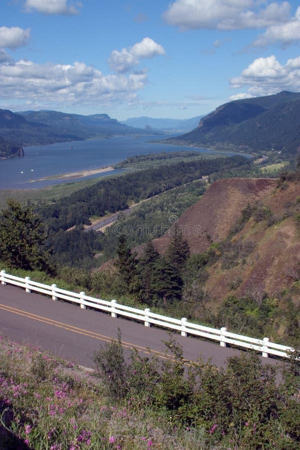 哥伦比亚峡谷河风景视图 免版税库存照片